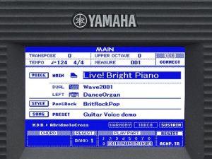 Monitor monocromatico di PSR-S650